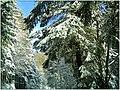 December Black Mountains Foret Noir - Master Mythos Black Forest Photography 2013 High Glotter Valley Sägendobel Pass - panoramio (6).jpg