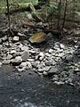 Delaware Water Gap National Recreation Area - Pennsylvania (5678362488).jpg