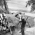 Denovnik Karel seka veje za drva, Spodnji Dolič 1963.jpg