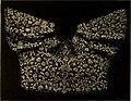 Dentelles et guipures - anciennes et modernes, imitations ou copies. Varieté des genres et des points. 52 portraits documentaires, 249 échantillons de dentelles, collerettes, fraises, manchettes, (14591634928).jpg