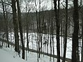 Der Frühling ist gekommen - 31.03.2013 (пролет в Германия) - panoramio (1).jpg
