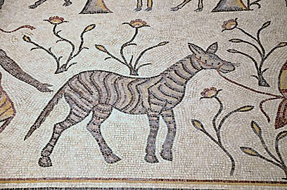 Detail of the 6th century AD mosaic in the Diakonikon Baptistry of the Moses Memorial Church depicting a hunting and herding scene interspersed with various animals, Mount Nebo, Jordan (40633570692).jpg