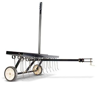 Dethatcher device that removes thatch from lawns