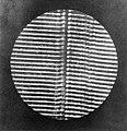 Deutscher Photograph um 1870 - Zwei Mikrophotographien (Zeno Fotografie).jpg