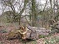 Dilapidated Nissen huts - geograph.org.uk - 1769897.jpg