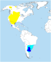 Distribution of Buteo swainsoni.png