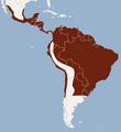 Distribution of Desmodus rotundus.png