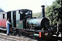Dolgoch Tallyn Railway Tywyn 1976 (36598595456).jpg