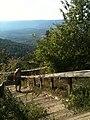 Dorian on Signal Mt. Chattanooga, Tenn. (5011370620).jpg