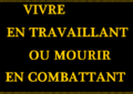 Drapeau des Canuts (Flag of the Canuts).png