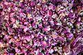Dried Roses (4260289056).jpg