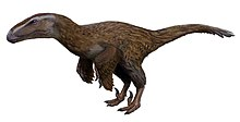 Feathered dinosaur with large head, claws and rudimentary wings