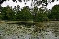 Drottningholm Palace park (2) (36126431301).jpg