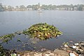 Dumped Garbage At Southern Edge - Santragachi Jheel - Howrah 2017-12-25 5666.JPG
