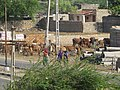 Dwaraka and around - during Dwaraka DWARASPDB 2015 (1).jpg