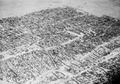 ETH-BIB-Afrikanische Stadt-Tschadseeflug 1930-31-LBS MH02-08-0071.tif