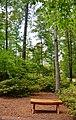 Eagle Lake, Charlotte, NC, USA - panoramio (3).jpg
