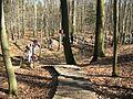Eberswalde zoo 021.jpg