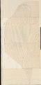 Echidna spec. - 1700-1880 - Print - Iconographia Zoologica - Special Collections University of Amsterdam - UBA01 IZ20300196.tif