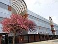 Edificio Torres Quevedo Zaragoza 1.jpg