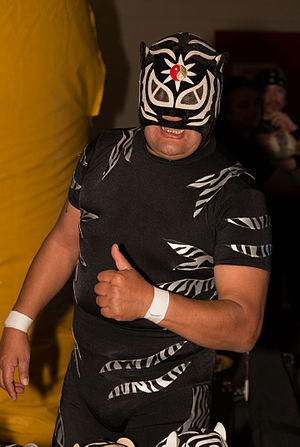Pantera (wrestler) - El Pantera in January 2016