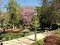 El Retiro Park 2.jpg