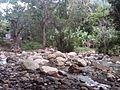 El rio parte arriva - panoramio.jpg