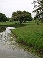 Ellerker Foreshore - geograph.org.uk - 446833.jpg