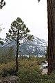 Emerald Bay State Park - panoramio (11).jpg