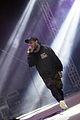 Emmure With Full Force 2014 04.jpg
