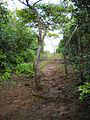 End Of Mud Trail (4823950406).jpg