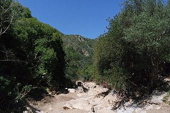 Entorno del Arroyo de Guadalora.JPG