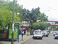 EstacionAguaSalud2004-6-13.jpg
