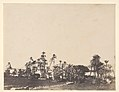 Etude de Palmiers, Bords du Nil, Kalabschi MET DP248089.jpg