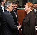 Europäischer Rat 2008 in Brüssel (3110462642).jpg