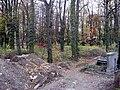 Evangelický hřbitov ve Strašnicích 99.jpg