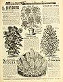 Everything for the garden (16646872057).jpg