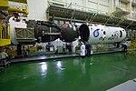 Expedition 49 Preflight (NHQ201609150019).jpg