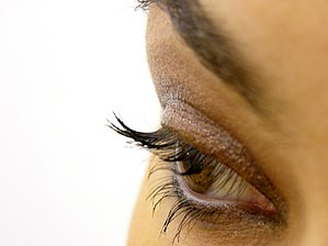 Eye liner - An eye with brown eye liner under the bottom lashes.