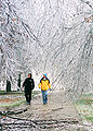 FEMA - 5766 - Photograph by David Stonner taken on 01-31-2002 in Missouri.jpg
