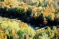 Fall Bridge - panoramio.jpg