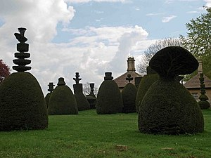 Clipsham - Topiary at Clipsham Yew Tree Avenue
