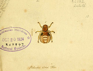 Georg Wolfgang Franz Panzer German botanist and entomologist (1755-1829)