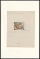 Felis moormensis - 1872 - Print - Iconographia Zoologica - Special Collections University of Amsterdam - UBA01 IZA1000556.tif