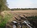 Field west of Manor Wood - geograph.org.uk - 1804041.jpg