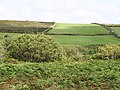 Fields - geograph.org.uk - 915996.jpg
