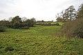 Fields near Goodrest Farm - geograph.org.uk - 1579056.jpg