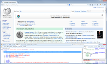 Firebug extension screenshot.png