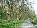 Fleshbeck Wood - geograph.org.uk - 162268.jpg