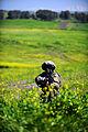 Flickr - Israel Defense Forces - Green Fields.jpg